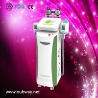Newest amazing result portable rf cryolipolysis machine to lose weight Manufactures