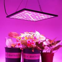 300x300mm Indoor Full Spectrum LED Grow Lights Dimmable With 3000K-6500K CCT Manufactures