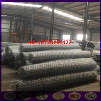 8x10 cm Ω Type  Ecologica Gabion Road Reinforced Wire Mesh in roll Manufactures