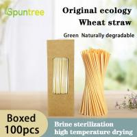 100% Biodegradable Compostable Disposable Natural Drinking Wheat Straw Manufactures