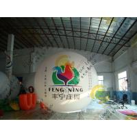Quality Eye - Catching Inflatable Advertising Balloon Digital Printing for Exhibition for sale