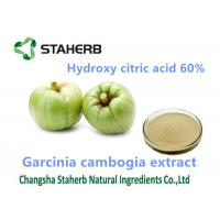 Garcinia Cambogia Extract Weight Reduction Powder Hydroxycitric Acid 60% Powder Manufactures