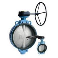 TTV Double Flanged Butterfly Valve DN40-200 PN-16 ANSI 150 Manufactures