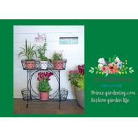 China Herbs Graceful Metal Plant Stands / Ladder Plant Stand Powder Coated on sale
