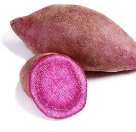 China China supply violet-red powder 10:1 Purple Sweet Potato Power, Solanum tuberdsm extract on sale