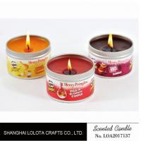 Small Exquisite Wax Scented Tin Candles Round Sticker For Travel And Festival Manufactures