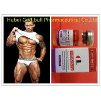 Natural Sustanon 250 Injectable Steroids , Fitness Testosterone Injections Steroids Manufactures