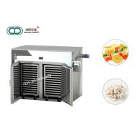Fruit Vegetable Hot Air Circulation Oven Stainless Steel 316L CT-C Series Industrial Manufactures