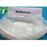 Androgenic Steroid Powder Boldenone Base 1-Dehydrotestosterone CAS 846-48-0 Manufactures