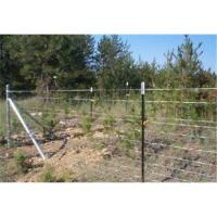 Hot Dipped Galvanized Wire Mesh Panel Fencing Manufactures