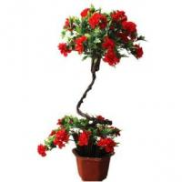 PE / PU Lotus Fake Potted Plants , Artificial Flower Pots Size Customized Manufactures