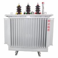 Pole Mounted 10 KV Three Phase Oil Immersed Power Transformer Low Loss Manufactures