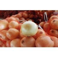 70 - 90mm White Natural Fresh Onion Sweet Round Shape For Hair Loss , Fresh Vegetable, Fine organization, Spicy thick Manufactures