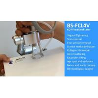 Beauty Scar Removal CO2 Fractional Laser Machine For Vagina Tightening Manufactures