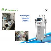 CE Certificated body sculpting machine fast slimming equipment cryolipolysis with teaching video Manufactures