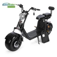 Two Wheel China Disc Brake Electric Bike for Adults Factory Citycoco with Front and Rear Suspension Shock Manufactures