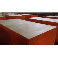 China ACEALL High Cost-effective Non-film Faced Plywood Formwork Panels for Concrete Construction Manufactures
