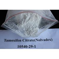 Safety Sustanon 250 Injectable Anabolic Steroids for Bodybuilding , GMP Manufactures
