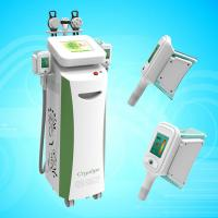 body slimming cryolipolysis equipment Manufactures