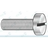 Grade 2 CP Slotted Cheese Head Titanium Fastener DIN 84 / ISO 1207 Manufactures