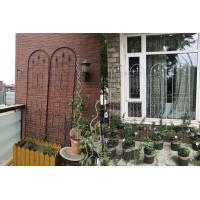 Powder Coated Garden Plant Trellis Beautiful European Style Fit Outdoor Vine Plant Manufactures