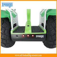Green Smart 2 Wheel Self Balancing Electric Scooter Auto Balance Scooter Manufactures