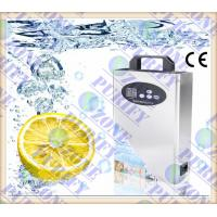 0.5g/1g/2g home ozone generator for air treatment and water treatment Manufactures