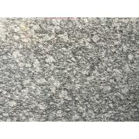 Spary White Polished Granite Floor Tiles Fashionable Appearance Manufactures