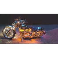 China Motorcycle LED Night Rider Strip Kit 18 Colors RGB 10pcs Strips -With Remote Control on sale