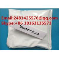 CAS 521-11-9 Raw Testosterone Steroids Powder Mestanolone For Muscle Growth Manufactures