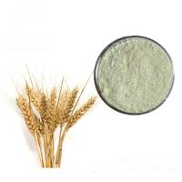 Buy cheap China Manufacturer Wholesale Price Food Grade Wheat Protein Powder from wholesalers