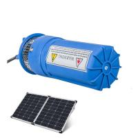 Whalelfo105-110PSI 12v 100m deep well high capacity solar powered plastic water pump system for agriculture Manufactures