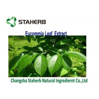 Quality Brown Yellow Powder Eucommia Ulmoides Leaf Extract Chlorogenic Acid 3-5% for sale