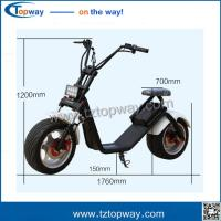 Quality Harley electric scooter 1000w citycoco electric scooter with big wheels front fork for sale