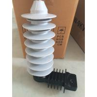 10KA 24kv Polymer lightning arrester for transformer Outdoor Manufactures