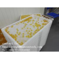 Food Grade Plastic Drying Trays For Drying Paintball / Softgel / Capsule with certificate Manufactures