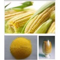corn animal feed/corn gluten meal 60% for animal and poultry fodder Manufactures