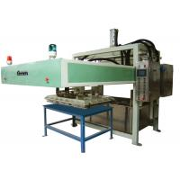 High Efficiency Fruit Paper Tray Making Machine Forming - drying process 2000Pcs/H Manufactures