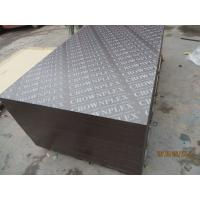 Buy cheap crownplex film laminated marine plywood for middle east,UAE market from wholesalers