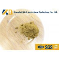 China 100% Pure Fish Protein Powder Natural Fish Smell For Mixed Feed Material on sale