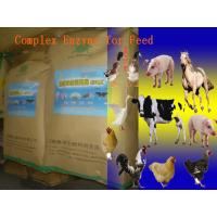 Animal Universal Nutrition Compound Enzyme Feed Additive Powder For Regular Daily Diet Szym-nutriRE Manufactures