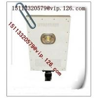 China 15W LED/30w Solar Panel all-in-one LED Solar Street Lamp OEM Supplier Manufactures