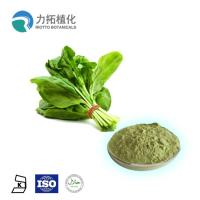 Spinach Extract Powder Dehydrated Organic Spinach Powder for Weight Loss Manufactures