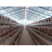 PVC Down Pipe Poultry Farm Structure Chicken Shed With Grey paint Surface Manufactures