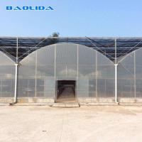 China Clear Multi Span Greenhouse Hot Dip Galvanized Pipe Size Customized on sale