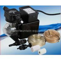 Blue - White Automatic Pool Dosing Systems Chemical Dosing Pump 220V 50Hz Manufactures