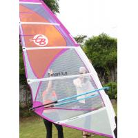 Quality Smart 4.5 Polyester Durable Wind Surf Sail Lightweight 5 Batten with Adjustable Darcon Head for sale