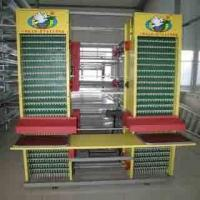 Automatic Egg Collection System Manufactures