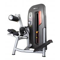 High End Back Exercise Machine , Men