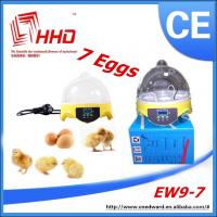 Quality Wholesale educational toys for kids/Quail Egg Incubator/educational toys for teens for sale